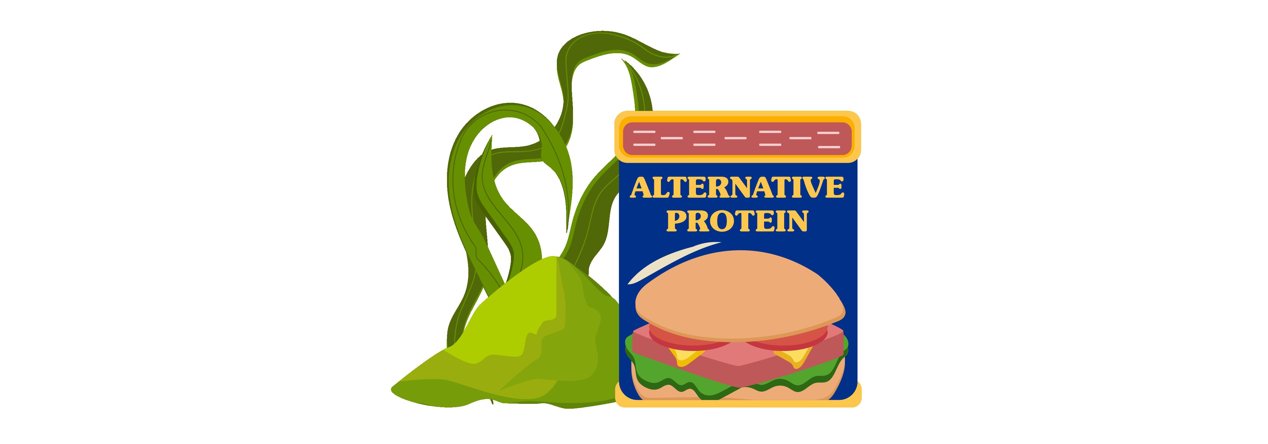 Food Innovation - Alternative Protein