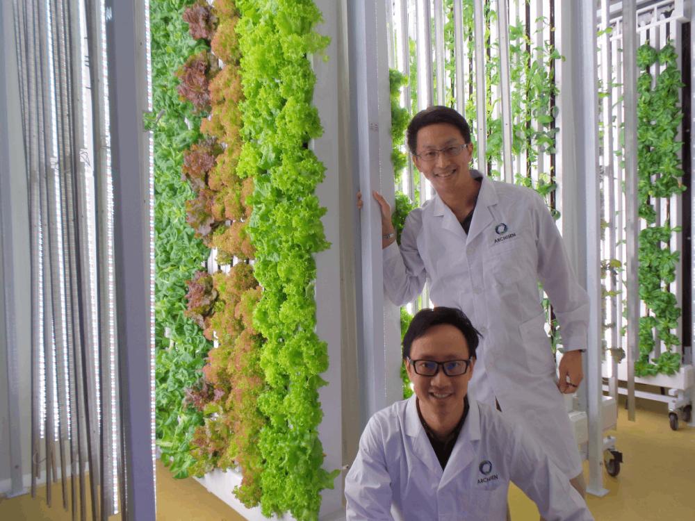 Food Innovation - Vincent and Sven Archisen