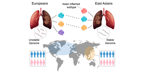 Breakthrough Study Reveals Gene Drivers Specific to Asian Lung Cancers 600x300