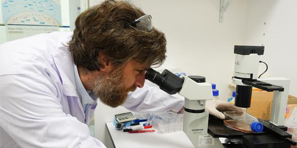 Dr Florent Ginhoux, SIgN