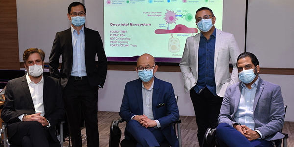 Singapore Scientists Discover Human Liver Cancer Cells Masquerading as Fetal-Like Cells