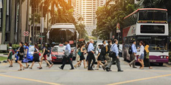 Public Transport Model