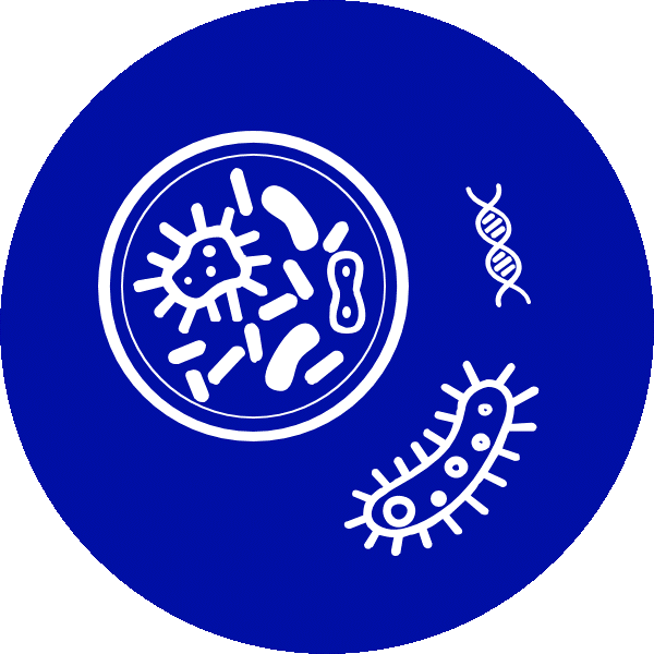 cell line development icon